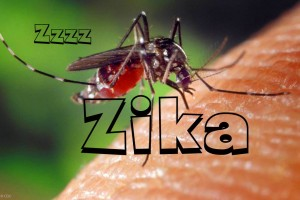 Here Come Another One……ZIKA VIRUS